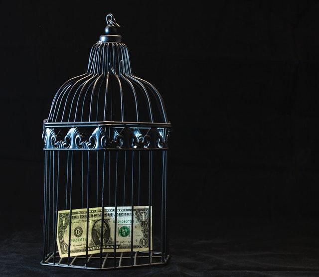 bankovka v ptačí kleci